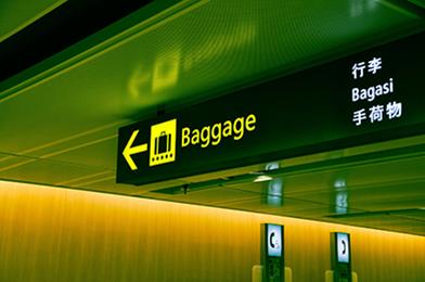 Lost Baggage Image